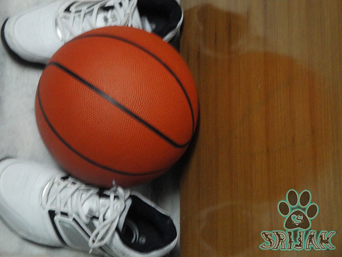Basketball the ultimate sport