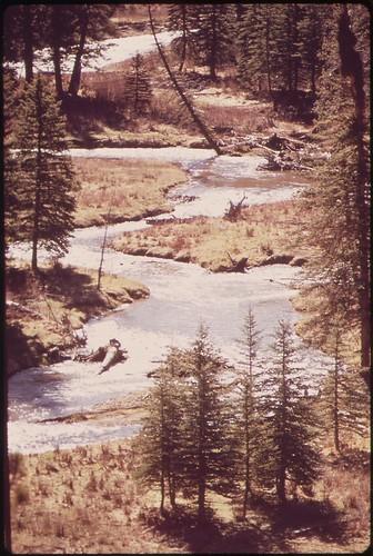 trees nature water river landscape photography colorado unitedstates environmentalprotectionagency documerica usnationalarchives boydnorton nara:arcid=544861 westdolores