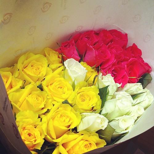 薔薇の花束いただきました。カード会社から。