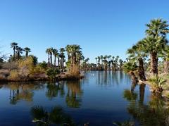 Lake @ Papago Park