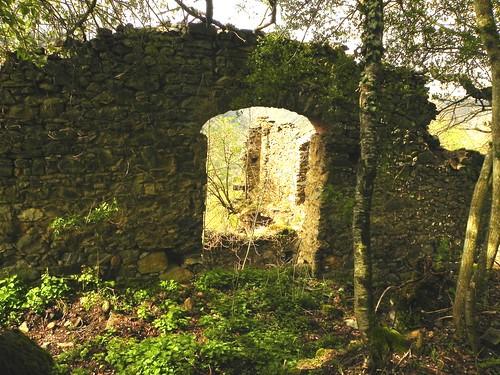 Ruine de Champ Magny