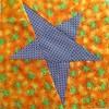 Maree's Star #1