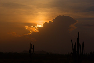 Dust Storm Sunset