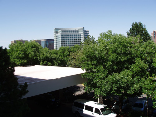 View from the Marriott Tech Center, Denver, CO June 2012 by suzipaw