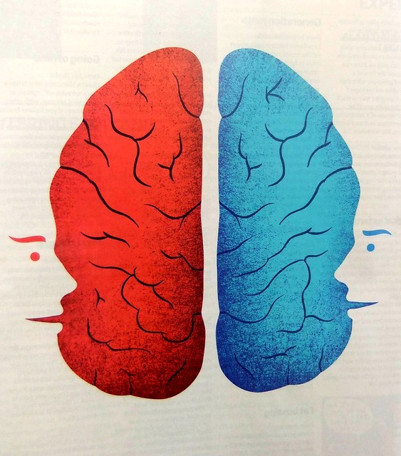 One brain, two minds