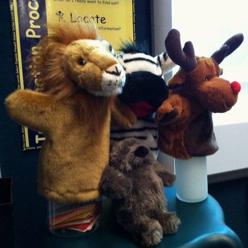 NSS Lion, Zebra, Moose and Bear