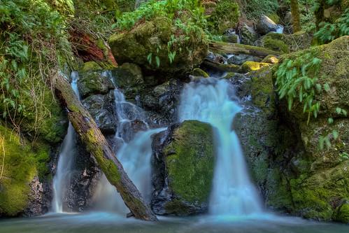 california creek canon waterfall hiking sigma trail marincounty cataractfalls cataractcreek canoneos50d sigma1770mmf2845dcmacrolens zeikoscpl catracttrail