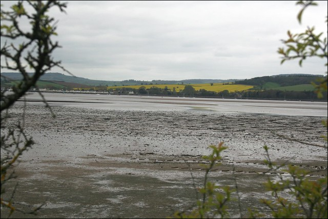 View accross the Exe estuary from Lympstone