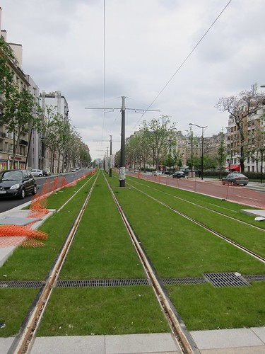 Grassed track in boulevard median