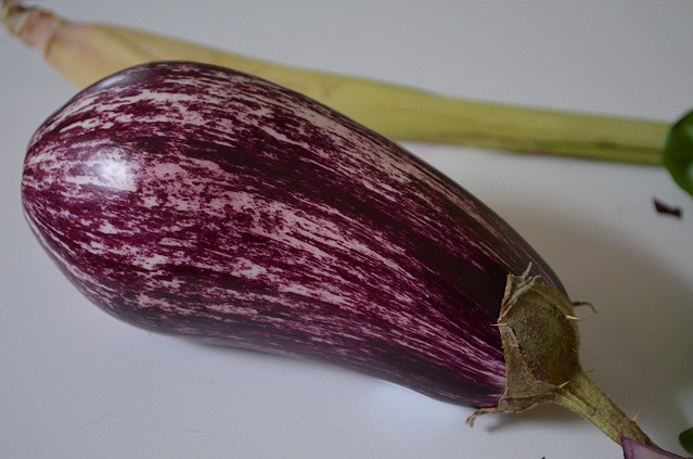 gorgeous purple eggplant