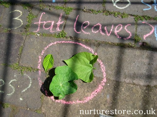 kids gardening activities ~ chalk