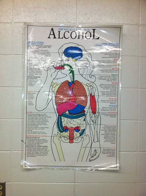 The Harmful Effects of Alcohol - Flickr - Photo Sharing!