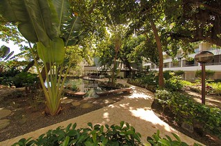 Caribe-Hilton-Hotel-Walking-path