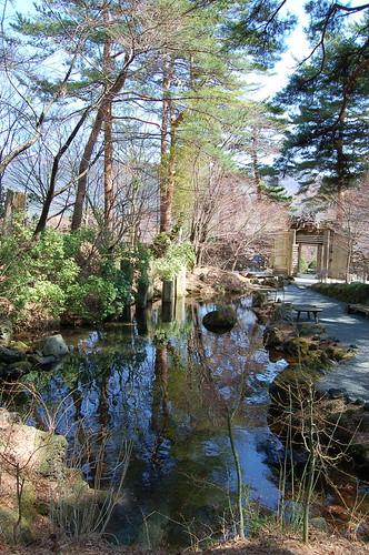 久保田一竹美術館の庭1