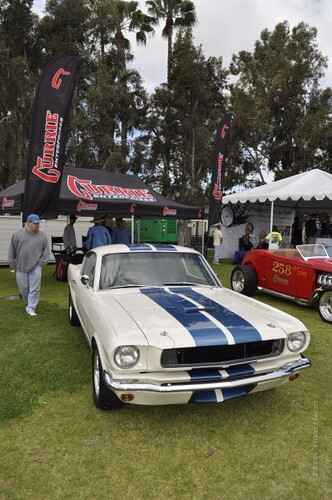 Fabulous Fords Forever 2014_439