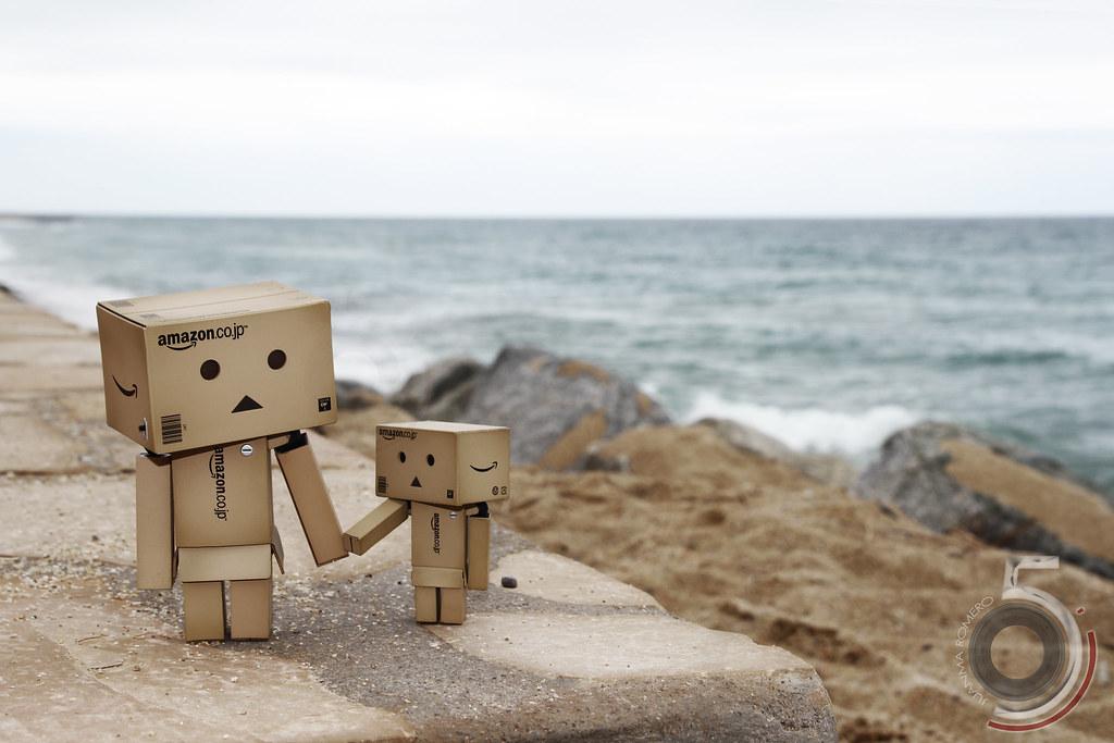 Danbos en la playa