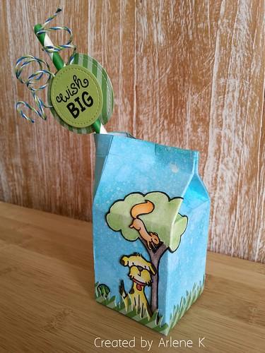Milk carton / Wish big