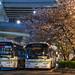 Shanghai Bus 43 沪B·36940 SWK-186 & 沪B·36907 SWK-187 SWB6120V4 MT Volvo B7R MK3