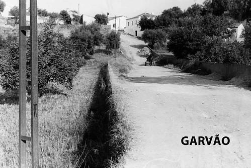 garv1WEB