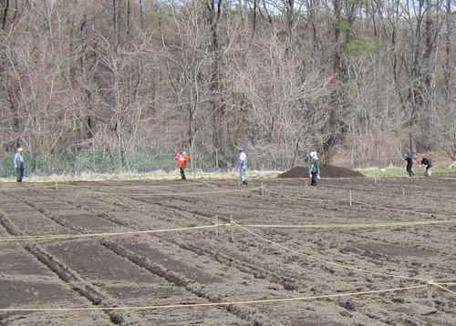 畑の区画割り作業 2012年4月21日 by Poran111