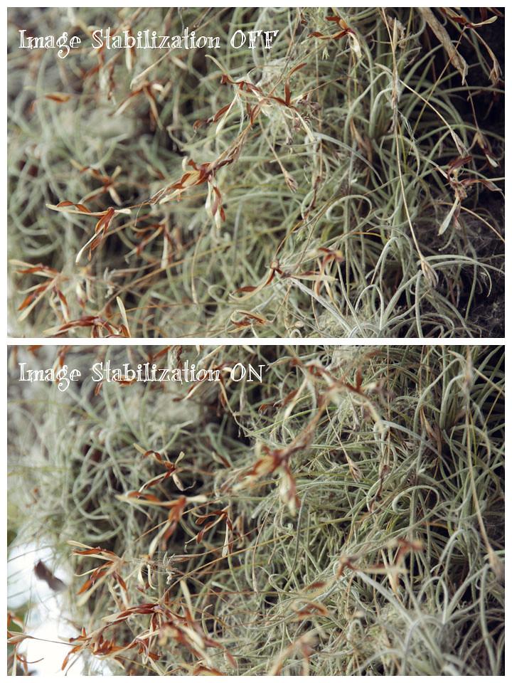 new lens image stabilization test