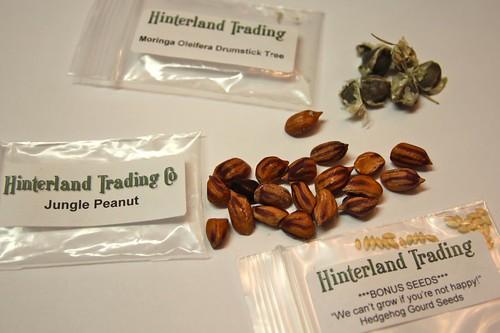 Hinderland Trading Seeds