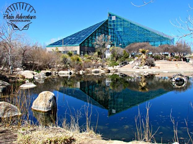 Rio Grande Botanical Garden – Albuquerque