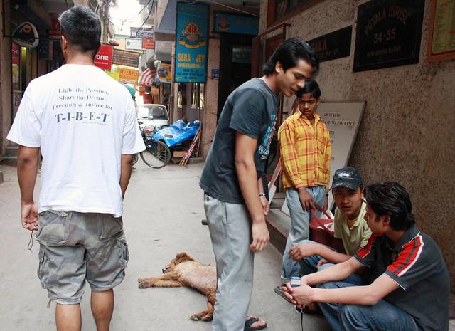 Mission Delhi - Lobsang Dorji Hayer, Majnu ka Teela