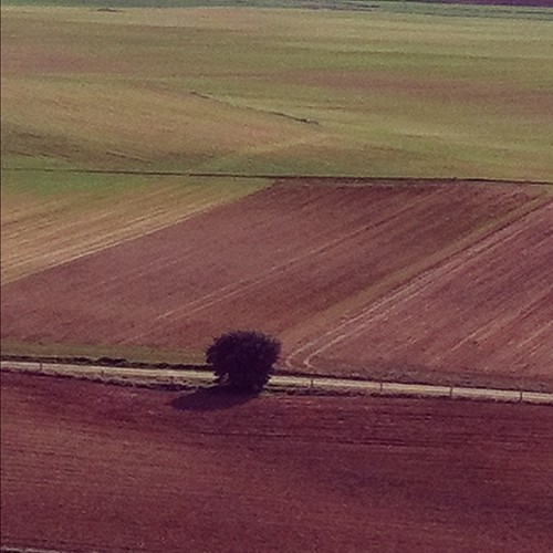 esa grandiosa soledad by eMecHe