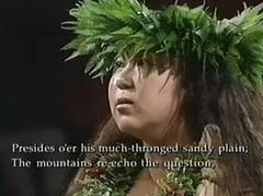 Subtitle narration