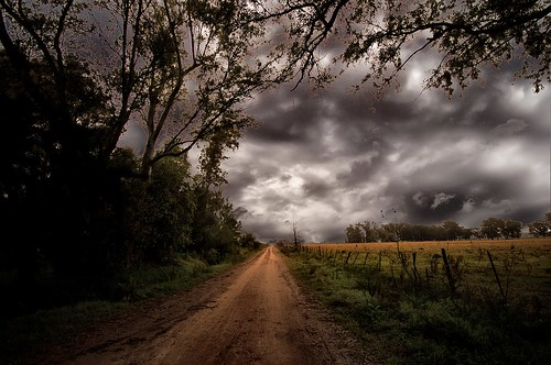 Camino otoñal - Autumn road