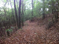 WMA Boundary Road