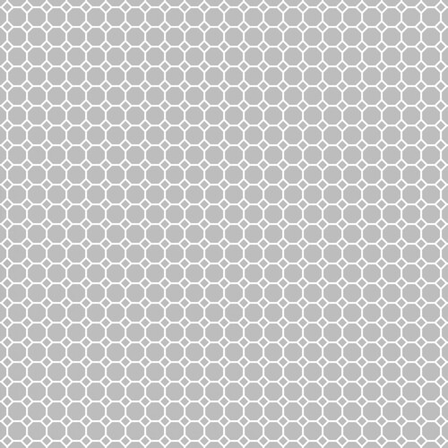 20-cool_grey_light_NEUTRAL_medium_octagon_solid_12_and_a_half_inch_SQ_350dpi_melstampz