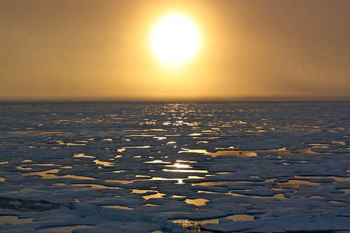 Suset in the Arctic