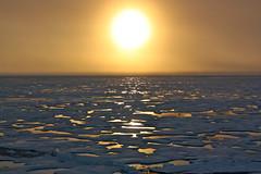 [フリー画像素材] 自然風景, 朝焼け・夕焼け, 氷山・氷河, 太陽 ID:201206112000
