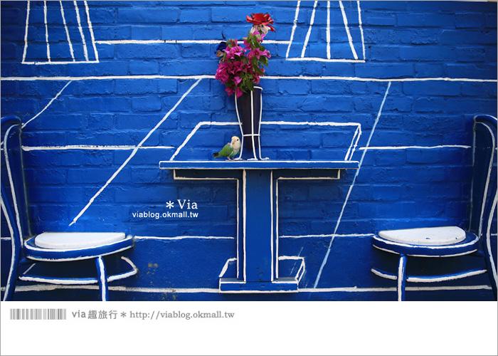 【彰化景點推薦】乳牛彩繪村(福寶村)~數百頭彩色小牛+夢幻藍晒圖的彩色村37