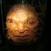 The Face of Boe, Doctor Who Exhibition, Cardiff, Wales, April 2014