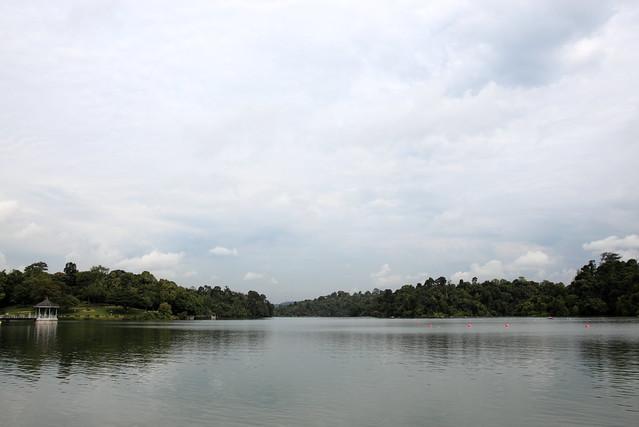 MacRitchie Reservoir Park