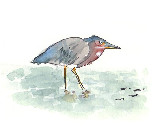 birdsnacks2_w