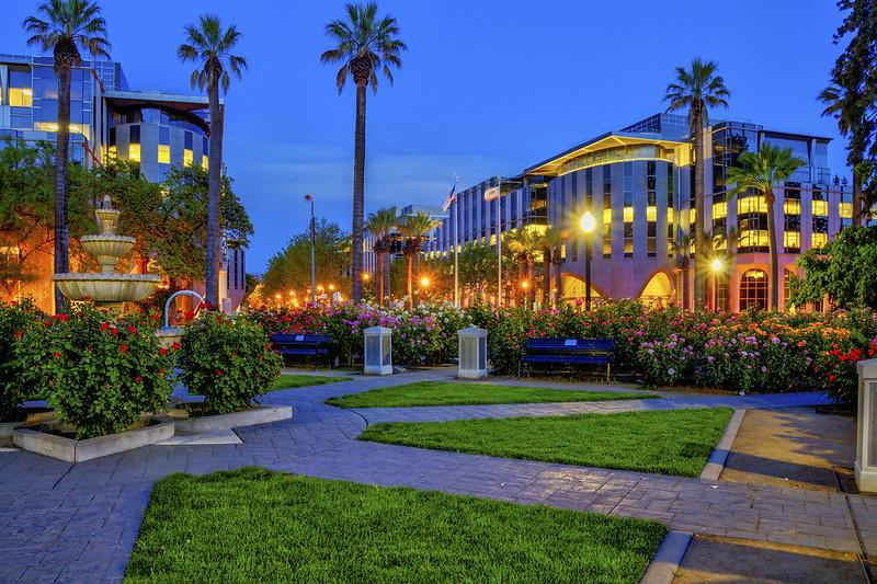 Night Scene, Capitol Park Rose Garden, Sacramento CA (C60_5303_4_5_6_tc_def-LR-NS)