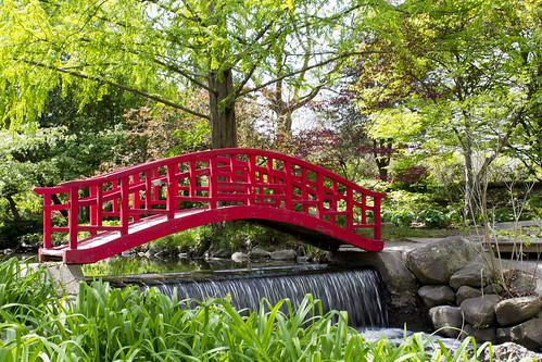 Cranbrook Gardens by beckstei