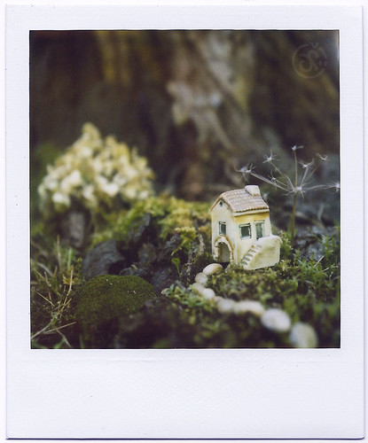 Discovery - Tiny House