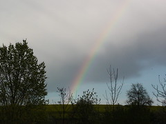 Regenbogen über Hostris / © Marco PETER
