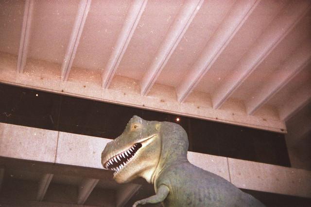 Urban Dino