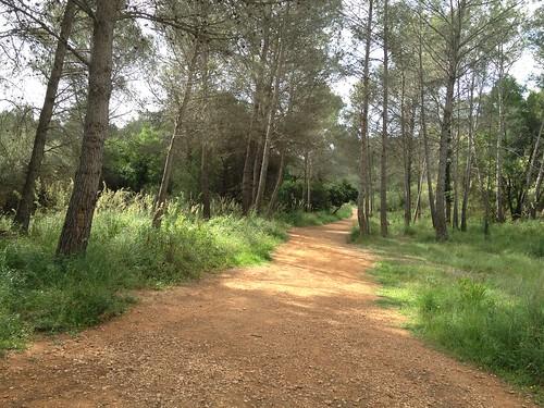 Ruta Castelldefels-Gavá