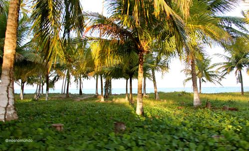 Rota Ecológica de Alagoas