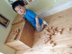 積み木(Jブロック)で遊ぶとらちゃん(2012/5/19)