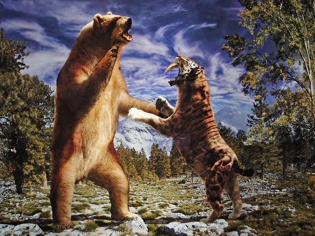 short-faced bear and s...