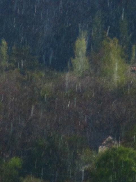 Cuadro del monte lloviendo