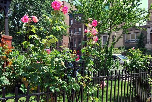 WPIR - gardens